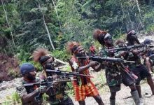 Photo of Kelompok Kriminal Bersenjata Papua harusnya Disebut Pelaku Teroris