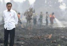 Photo of Cegah Kebakaran Hutan, Kaltim Siapkan 2.500 Personel