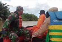 Photo of Buaya Muara Terkam Dimas di Depan Ayahnya, SAR: Kami masih Nyari Korban